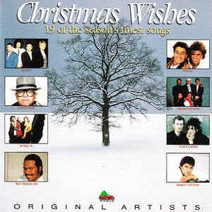 Christmas Wishes - Diverse Artiesten